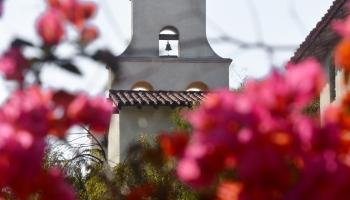 santa barbara mission flowers